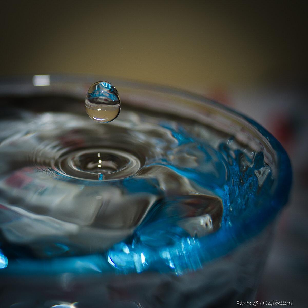 acqua-1-1